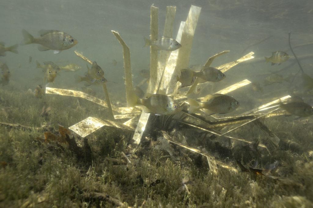 fishiding-structure-fhs-170-lowres-1024x683